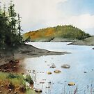 St. Patrick's Island by Douglas Hunt