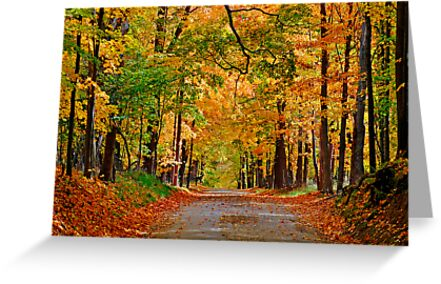 Autumn Gold by Rodney Campbell