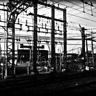 Train Power Lines II  by ShellyKay