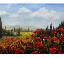 Beyond the Poppies by Chris Brandley Photographic Print