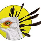Secretary Bird by skeletalbird
