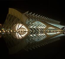 City of Art and Sciences, Valencia 2006 by Michel Meijer