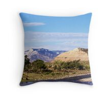 A Moment in the Country Throw Pillow