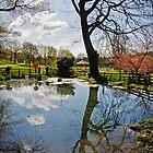 Pontypool Park by Paul Croxford
