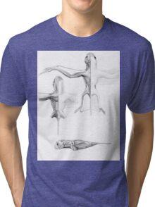 Anurognath Muscle Study Tri-blend T-Shirt