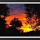 Wisconsin Sunset by Deb  Badt-Covell