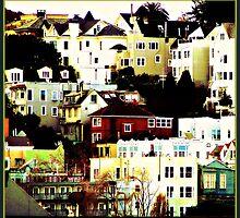 Windows on the Hill by Shandopics