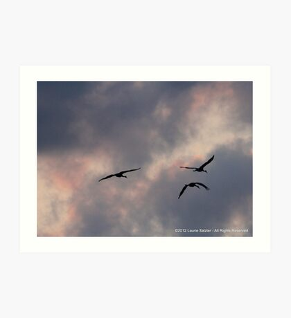 Headin'  to the Roost Art Print