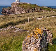 Llanddwyn Rock by Adrian Evans
