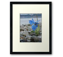 Artificial Beauty Framed Print