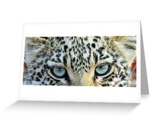Cats eyes! Greeting Card