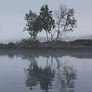 Foggy Morning Fishing  #6 by gypsykatz