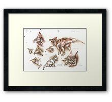 Olorotitan Studies Framed Print