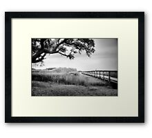 Dream Sequence in B&W Framed Print