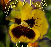 Sharon's Get Well Card - Floral Pansy by MotherNature
