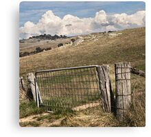 Lost near Lancefield, 2012 Canvas Print