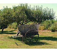 Another view - Antique Apple Cart, Prescott Farm, Middletown, RI Photographic Print