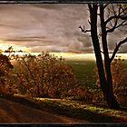 Sun Set at Mt Ainslie, Canberra/Australia by Wolf Sverak