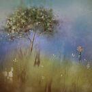 wonder by © Karin  Taylor