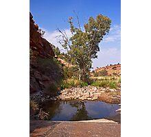 Tupul waterhole #3 Photographic Print