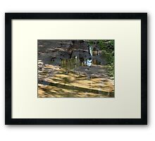 Shadows play Framed Print