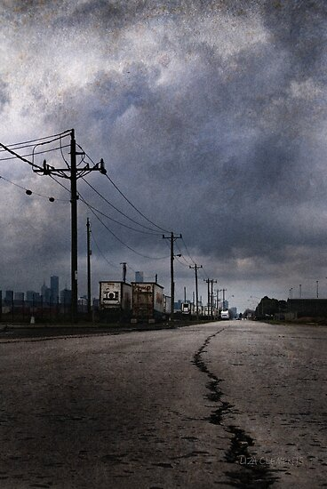 Crack in the Road, Port Melbourne, 2010 by Liza Clements
