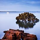 Tenby Point Sunset by Joel McDonald