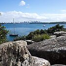 South Head - Rock and Beauty by miroslava