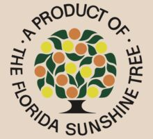 Florida Sunshine Tree - Department Of Citrus by The Department Of Citrus
