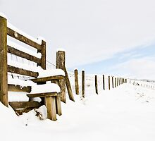 Fence in Snow by Paul Croxford