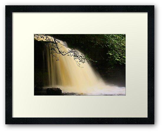 Cauldron Falls, Walden Beck, North England by Ian Alex Blease