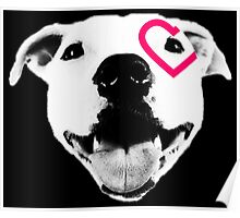 Heart over eye Pittie Poster