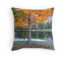 Lakeside  In Autumn Throw Pillow