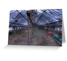 Glasshouse Greeting Card