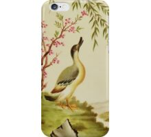 Duck Motif iPhone Case iPhone Case/Skin
