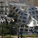 Cataclysmic Architecture by Ken McElroy