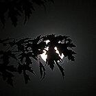 Moon In The Grip by trueblvr