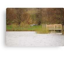 A crane in flight Canvas Print