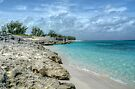 Beach in Paradise island, The Bahamas by 242Digital