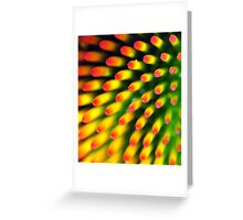 why are there so many songs about rainbows? Greeting Card