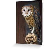 Whoooooo's There? Greeting Card