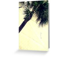 Palm in the Wind Greeting Card