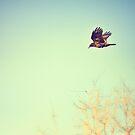 Autumn Flight by Christopher Burton