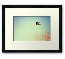Autumn Flight Framed Print