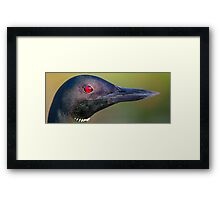 Loon Portrait Framed Print
