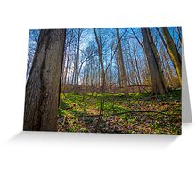 Off The Trails Greeting Card