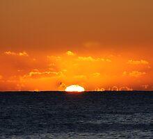 First Sun by Kelly Robinson