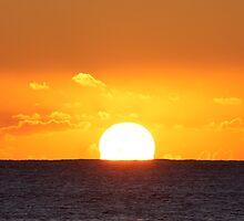 Suns light by Kelly Robinson
