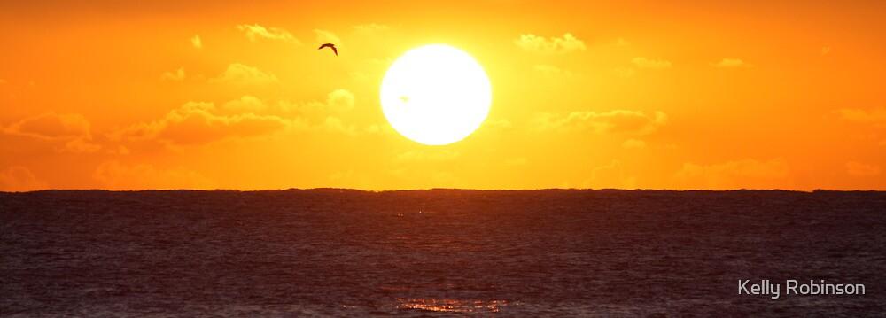 New Day Sunrise Flight by Kelly Robinson