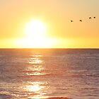 Dawn Flight by Kelly Robinson